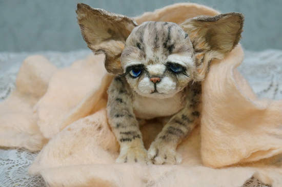 Young Devon Rex Cat Named By Tsybina Natali Bear Pile