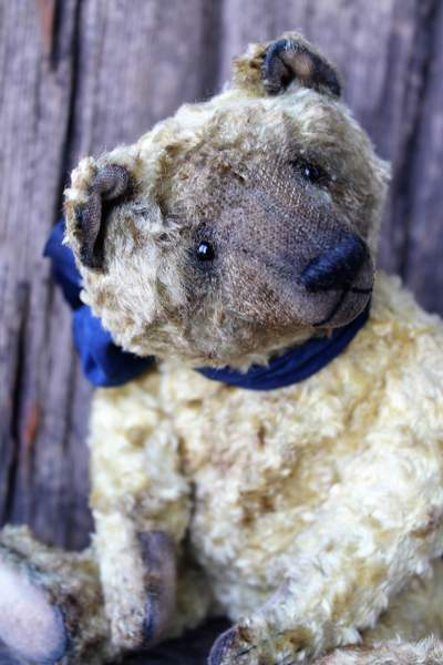 Morgan by chernyuk svetlana bear pile morgan stuffed bear publicscrutiny Choice Image