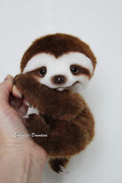 Baby Sloth Smile By Ljudmila Donodina Bear Pile